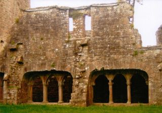 cloister garth bective abbey